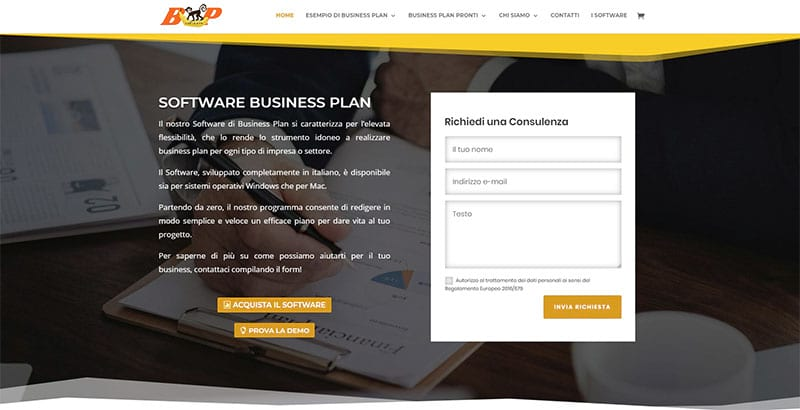 Software Business Plan
